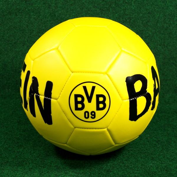 BVB Fussball Ballspielverein Gr. 5